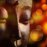 Stille und Dankbarkeit