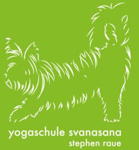 Yogalehrer-Stephen-Raue-Yogaschule-Svanasana-Lengede